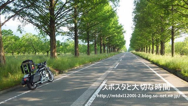 DSCF0088 - コピー.jpg